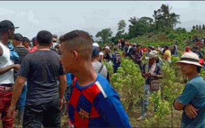 Panorama de las erradicaciones violentas y violaciones a derechos humanos en Colombia