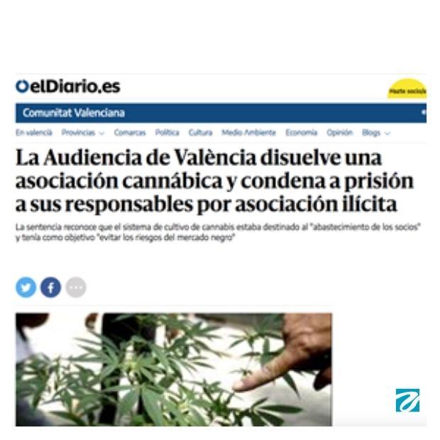 España: Un problema por resolver  LA LEGALIZACION DEL CAÑAMO.