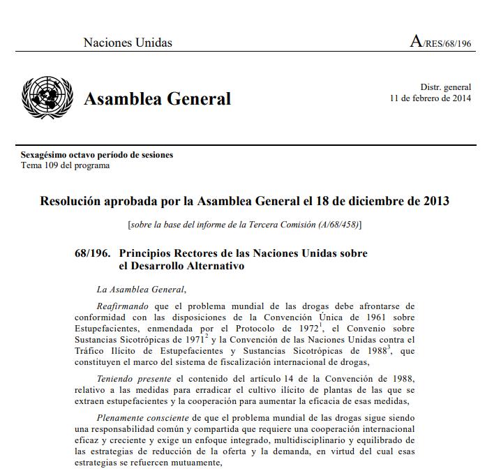 Principios Rectores del Desarrollo Alternativo ONU.