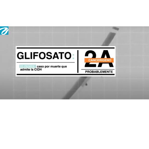 Glifosato: el primer caso por muerte que admite la CIDH. Fuente y Créditos El Espectador