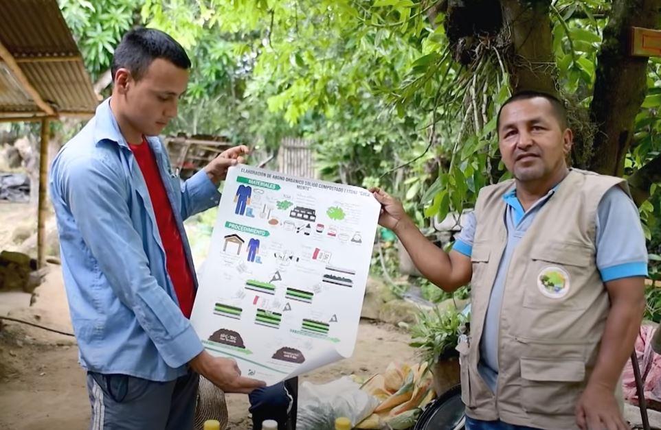 COCA LEGAL Y CACAO EN COLOMBIA